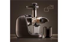 G21 Chamber GZ-G16